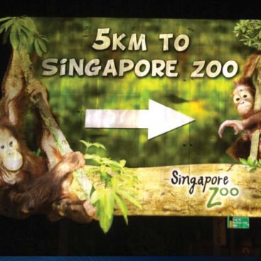 Special Material : Zoo Outdoor