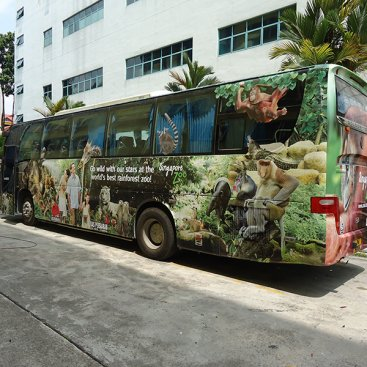 Large Format Vehicle : Singapore Zoo
