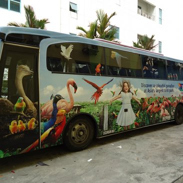 Large Format Vehicle : Jurong Bird Park